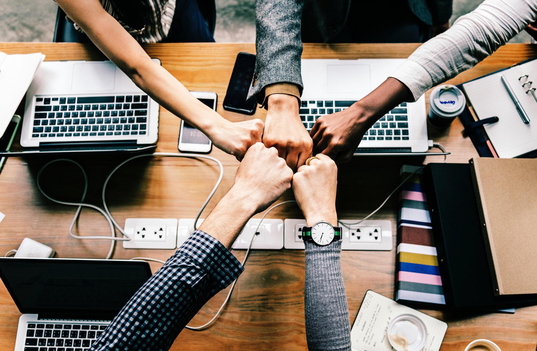 segredo,empresas,crescimento,equipe